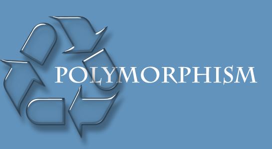 Understanding of Polymorphism in PHP