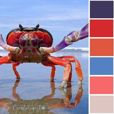 Color Inspiration | Halloween Crab