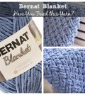 Bernat Blanket and DW Blanket
