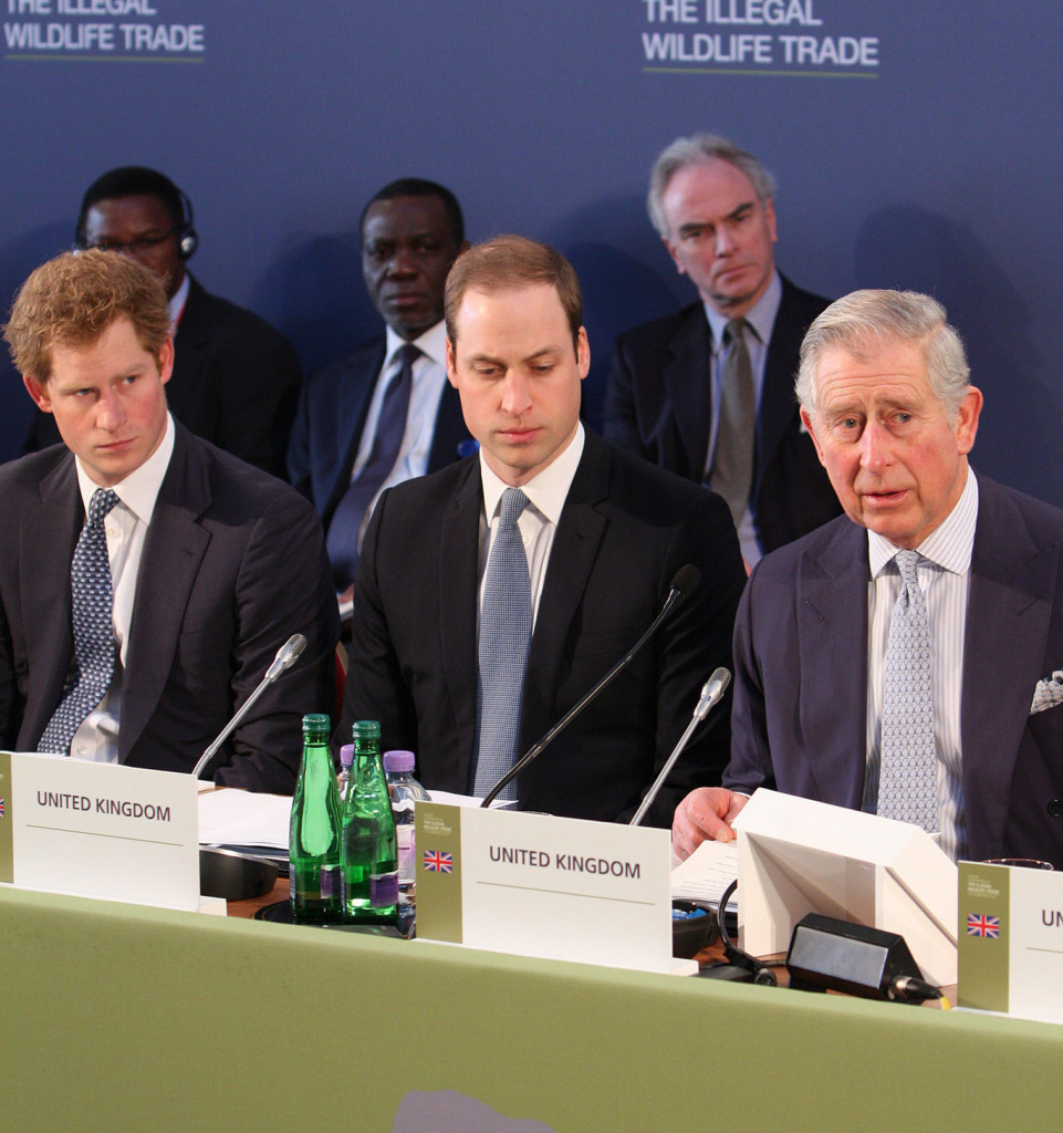 prince charles must be our next king, not prince william