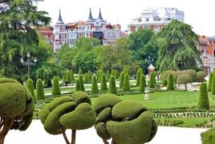 Image result for trees in retiro park madrid