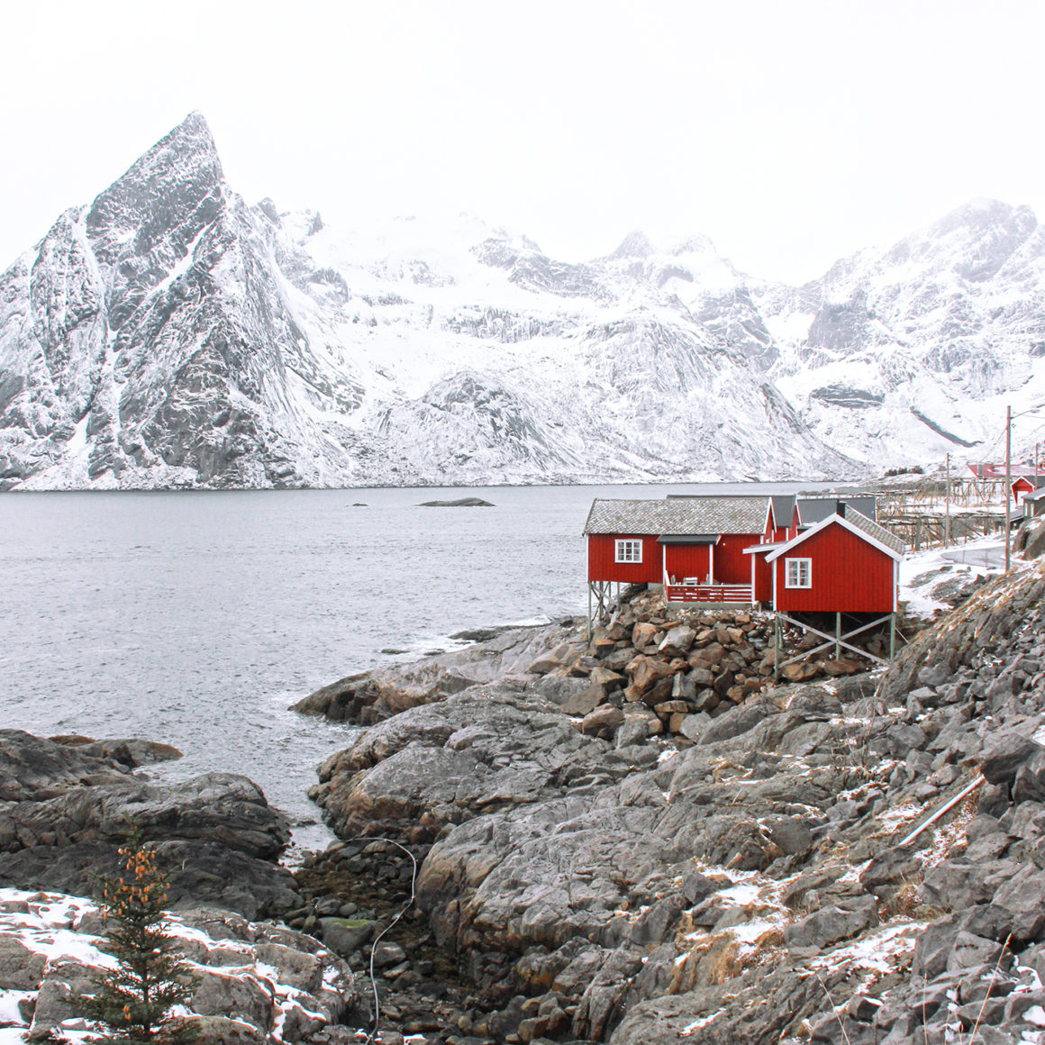 Pl Suggest Some Nice Places In Kerala And Best Time For: Lofoten Islands: Exploring The Arctic Landscape
