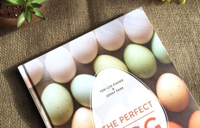 book_egg
