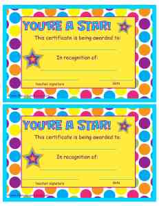 You're a Star End of Year Certificate by The Curriculum Corner