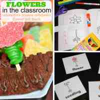 Flowers:  Interactive Science Notebook