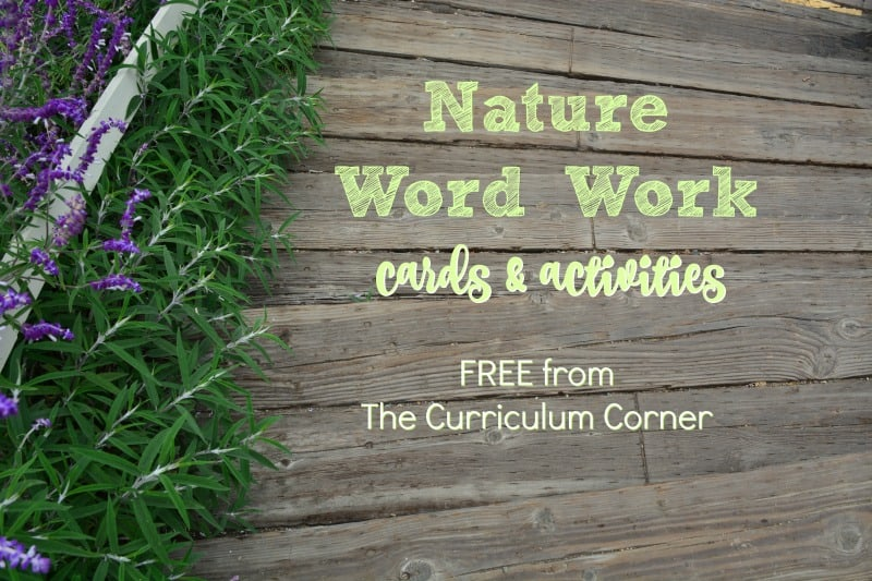 This nature word work is a free set that contains word cards with pictures and coordinating word work activities for the classroom
