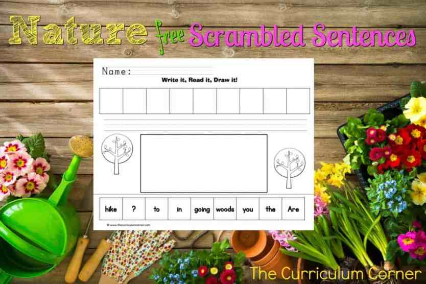 FREE Nature Scrambled Sentences Literacy Center from The Curriculum Corner
