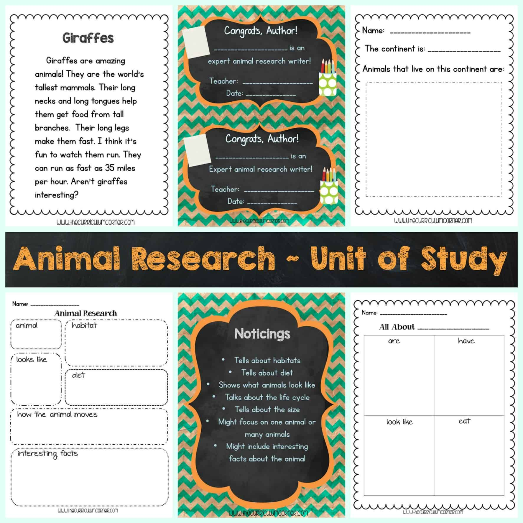 Writing Unit Of Study Animal Research