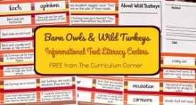 FREE Owls & Turkeys Informational Text Literacy Centers from The Curriculum Corner 6