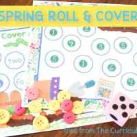 Spring Roll and Cover