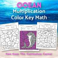 Ocean Multiplication Color Key
