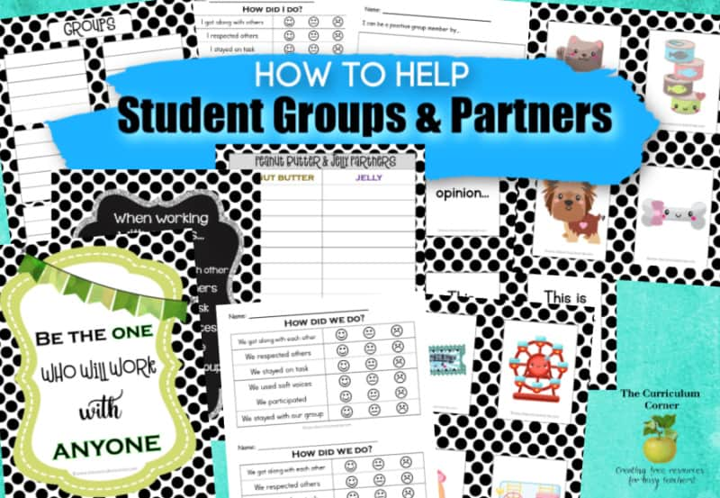 Student groups and partners