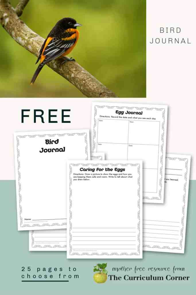 Bird journal for students
