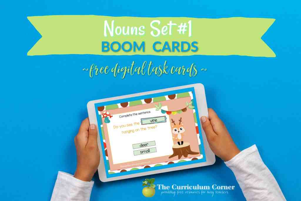 These Noun Boom Cards are a self checking digital task card resource for your classroom.