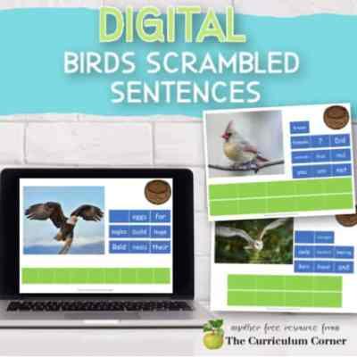 Digital: Birds Scrambled Sentences