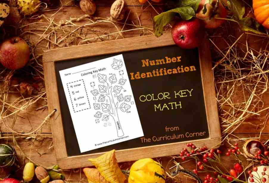 FREE Color Key Math | Number Identification | Kindergarten | The Curriculum Corner | Fall Color by Number