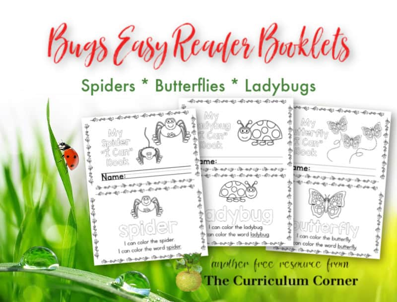 Bugs Easy Reader Booklets