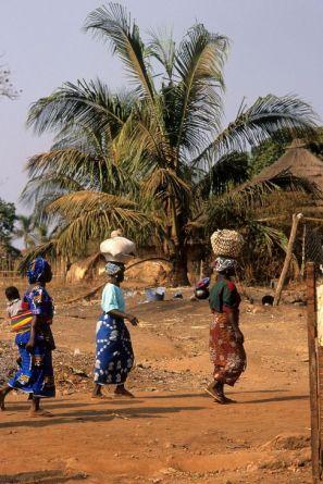 Guinea Blog-Optimized037