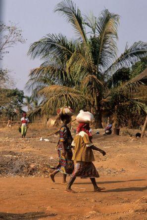 Guinea Blog-Optimized039