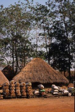 Guinea Blog-Optimized085