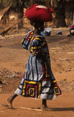 Guinea Blog-Optimized095