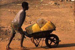 Guinea Blog-Optimized098