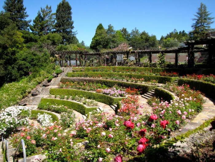 things to do in berkeley ca