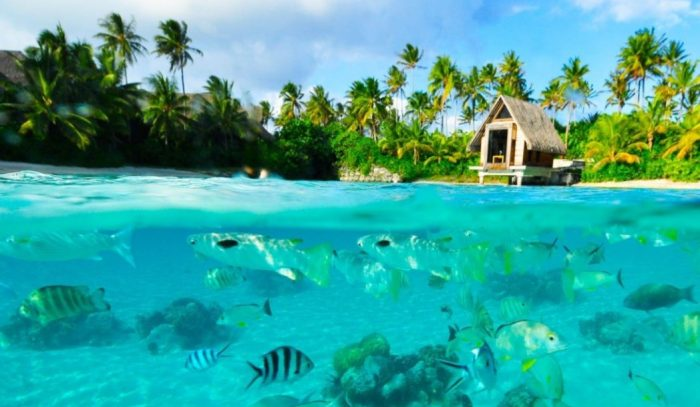 the best time to visit bora bora