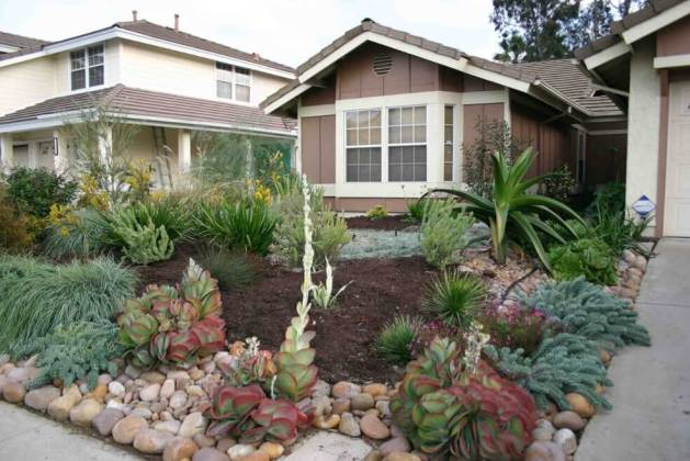 front of house landscape design - Western Water-Wise
