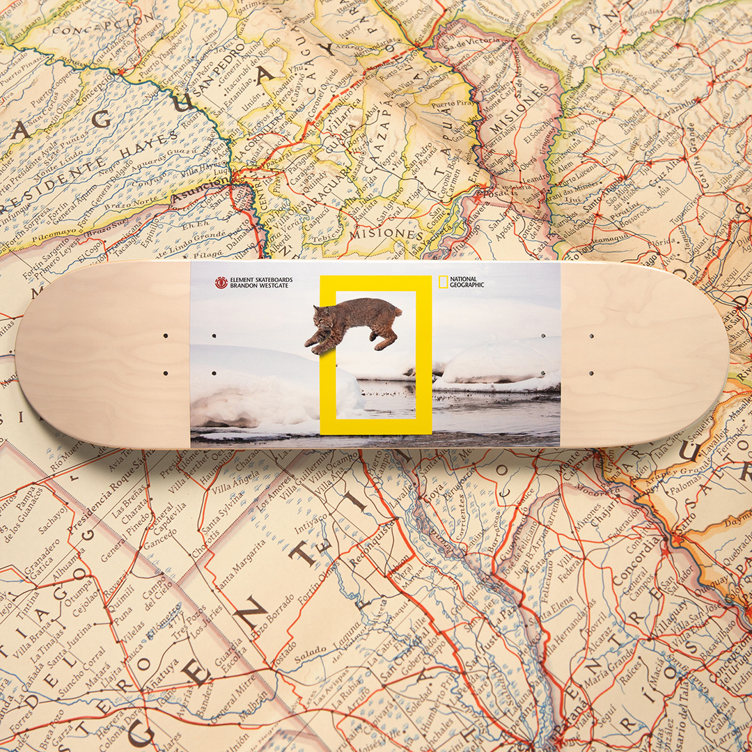National Geographic Element Skateboards 8