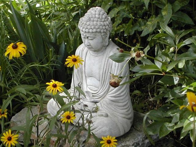 Buddhist Growth. . .