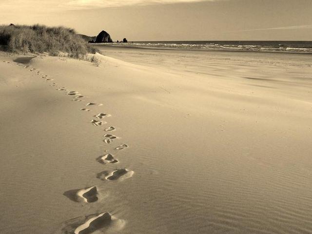 Journey. . .