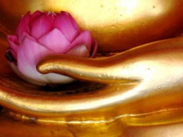 Buddhism for The Non-Religious . . .