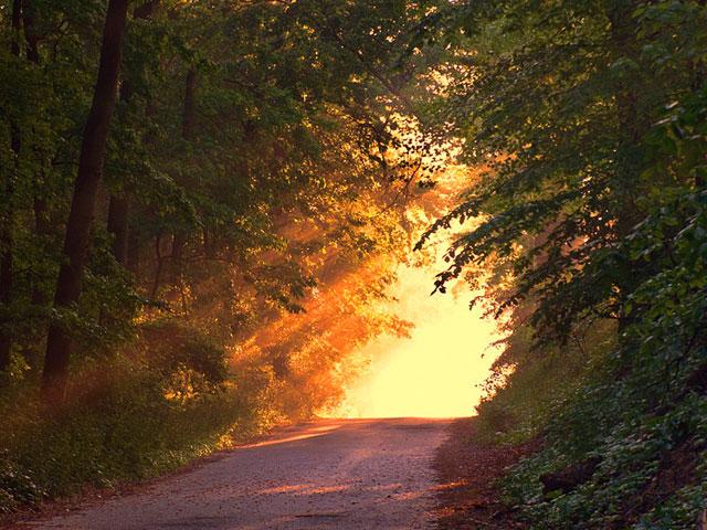 Illuminate Your Path. . .
