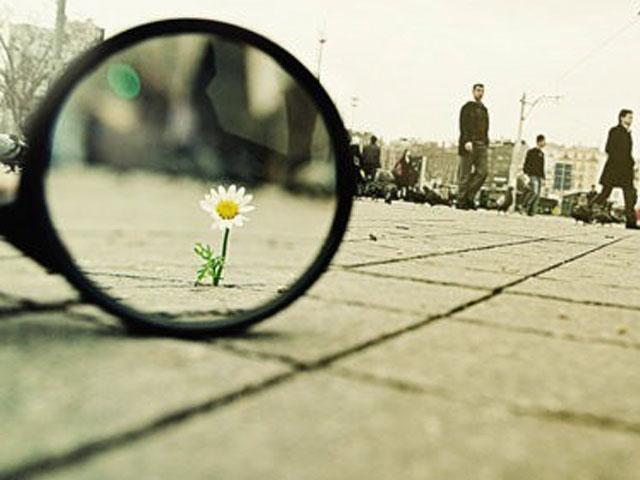 Small Things. . .