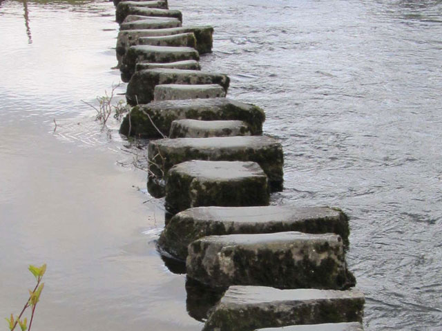 Stepping Stones. . .