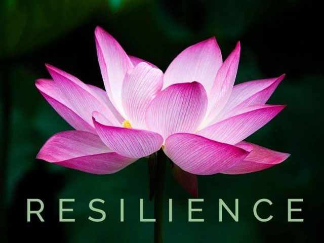 Resilience Within. . .