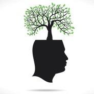 Inner Growth. . .