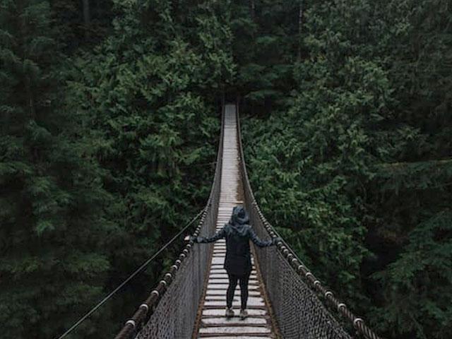 The Bridge. . .