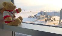 teddy bear vip treatment on airport