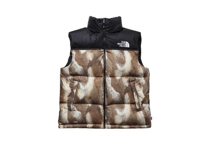 Supreme-The-North-Face-AW13-Outwerwear-09