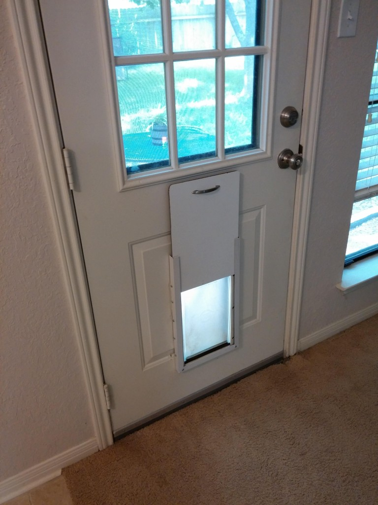 This Guy Decided To Build An Improved Cat Door And Its