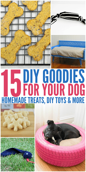 15 DIY Goodies For Your Dog