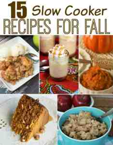 15 Slow Cooker Recipes for Fall