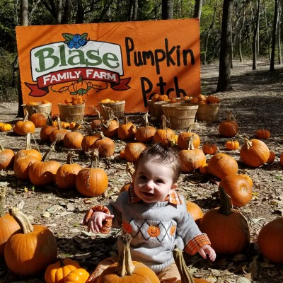 The Best Pumpkin Patches in Dallas Fort Worth