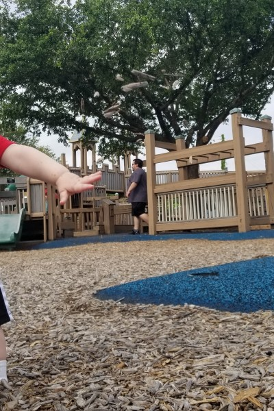 20+ Activities in Dallas for One Low Price