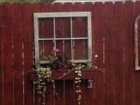 garden window-4