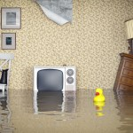 4 Top Reasons Why You Shouldn't Ignore or Delay Fixing any Plumbing Problem