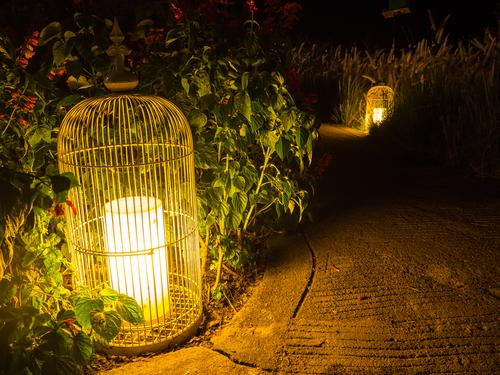Bright Gardening Ideas – Six Tips for Stylishly Illuminating Your Backyard