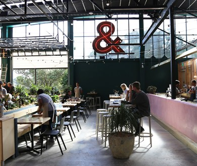A bold addition to Orakei Bay Village offers light, bright all-day dining